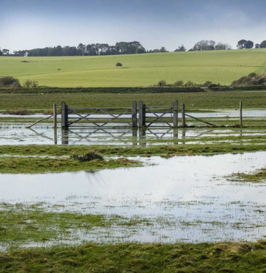 Why are we building homes on flood plains?
