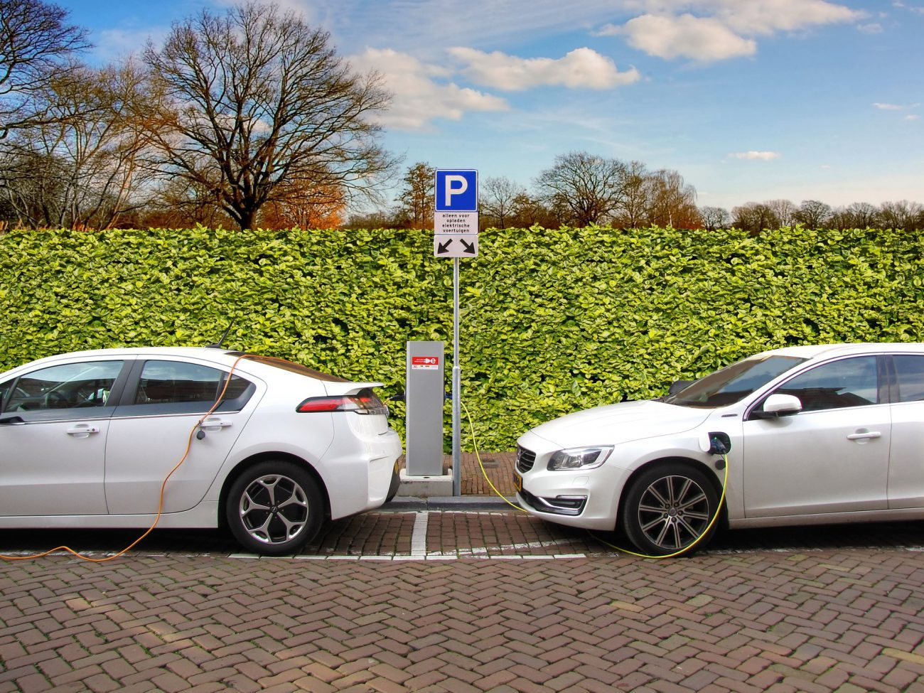 Does driving a hybrid car reduce your car insurance