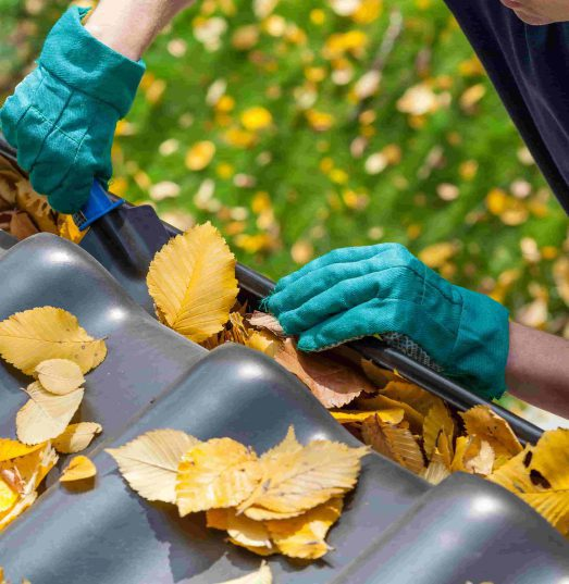 Does home insurance cover cleaning gutters?